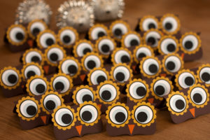 2016_02_28_0123Brownie owl toppers