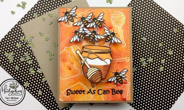 Honey Pot Interactive Card with Teri