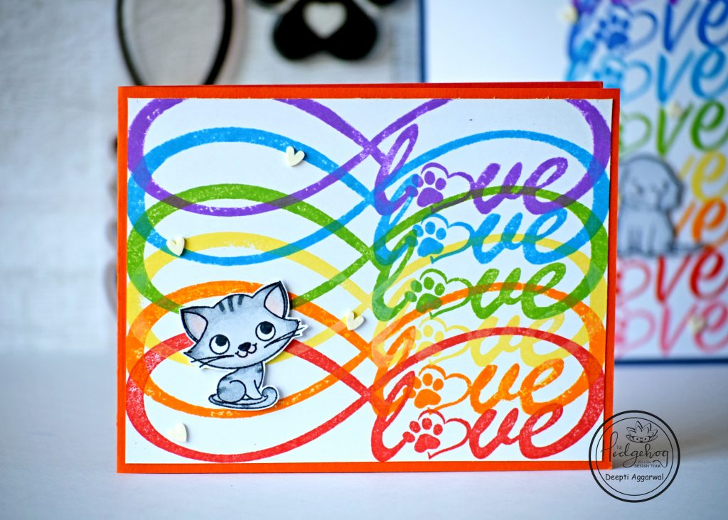 Rainbow colored infinity love card with cat image
